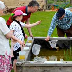 Garden Allotment & Ponds
