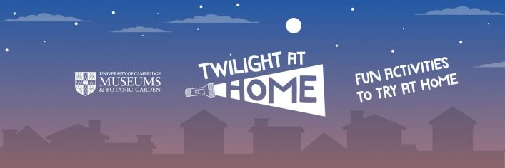 Twilight at Home banner